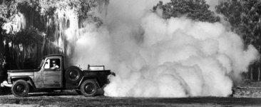 DDT-Truck-1.jpg