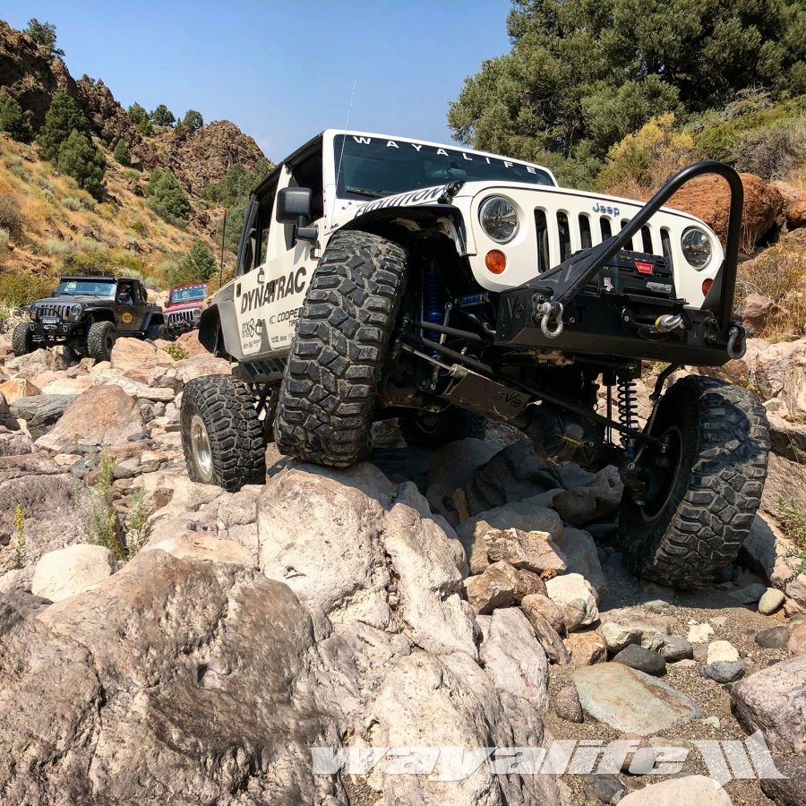 Moby on Bronco Canyon