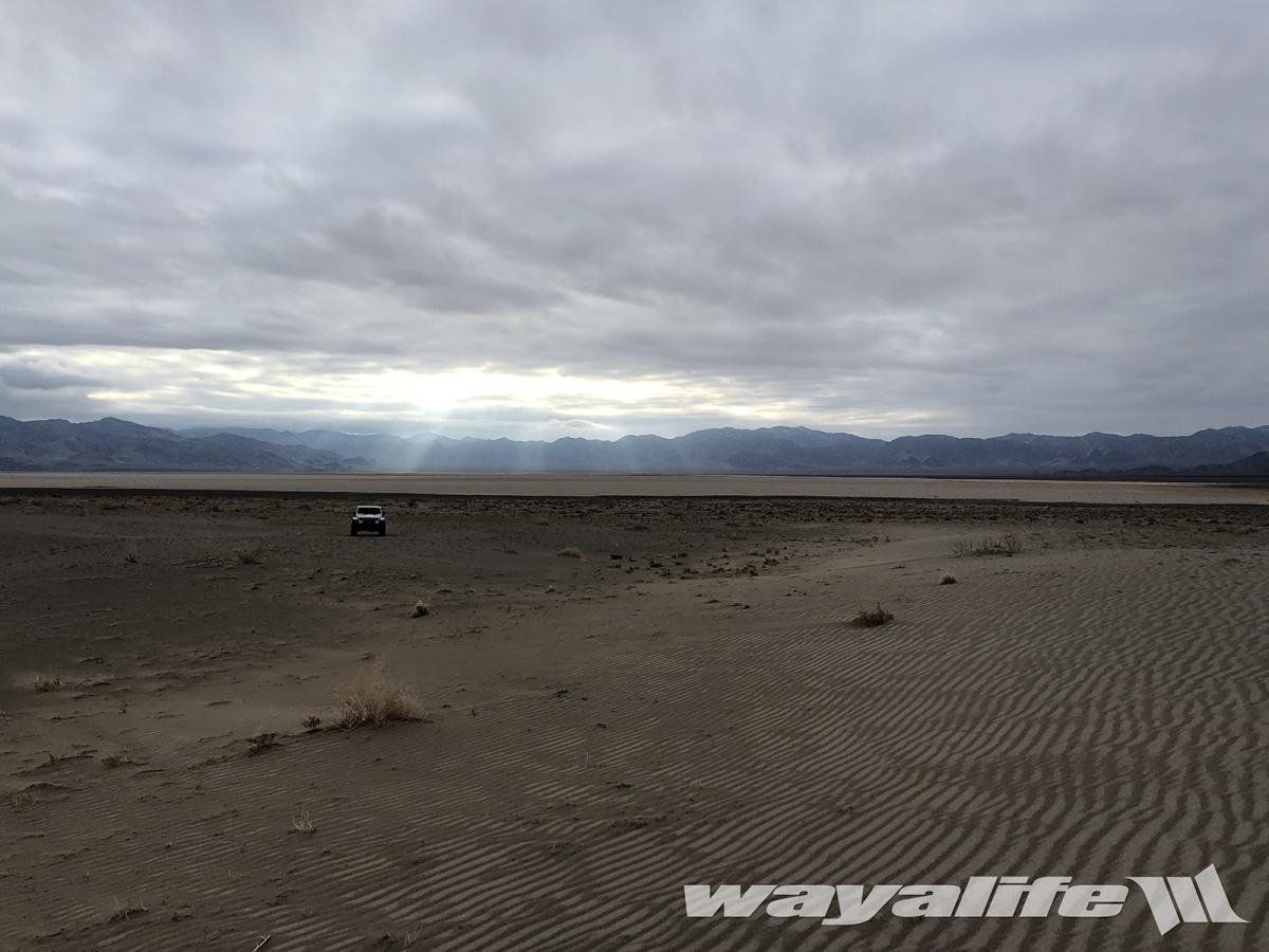JL Wrangler in the Desert
